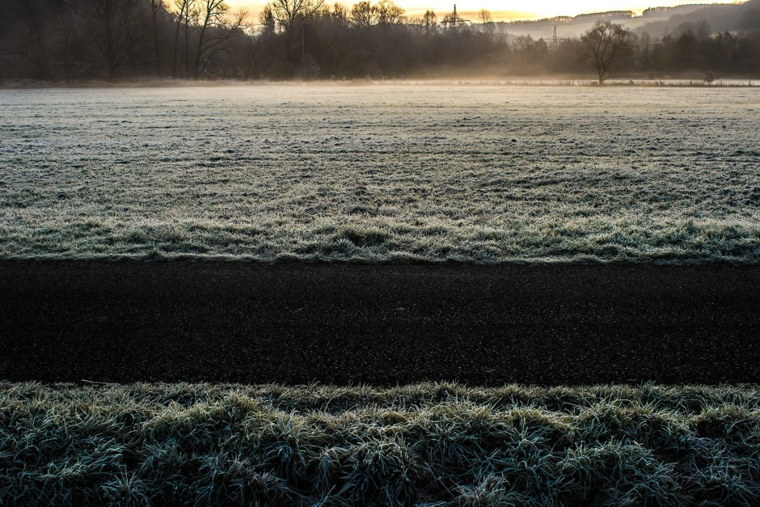 Frost covered pasture